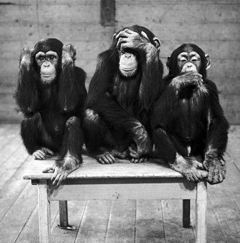 three-wise-monkeys-c11765657.jpeg